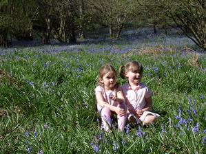 Flo & Immie in the bluebells