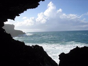 North Point Barbados Animal Flower Cave